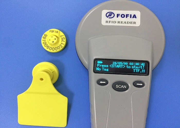 Electronic RFID Ear Tag For Animal Breeding And Slaughter ...