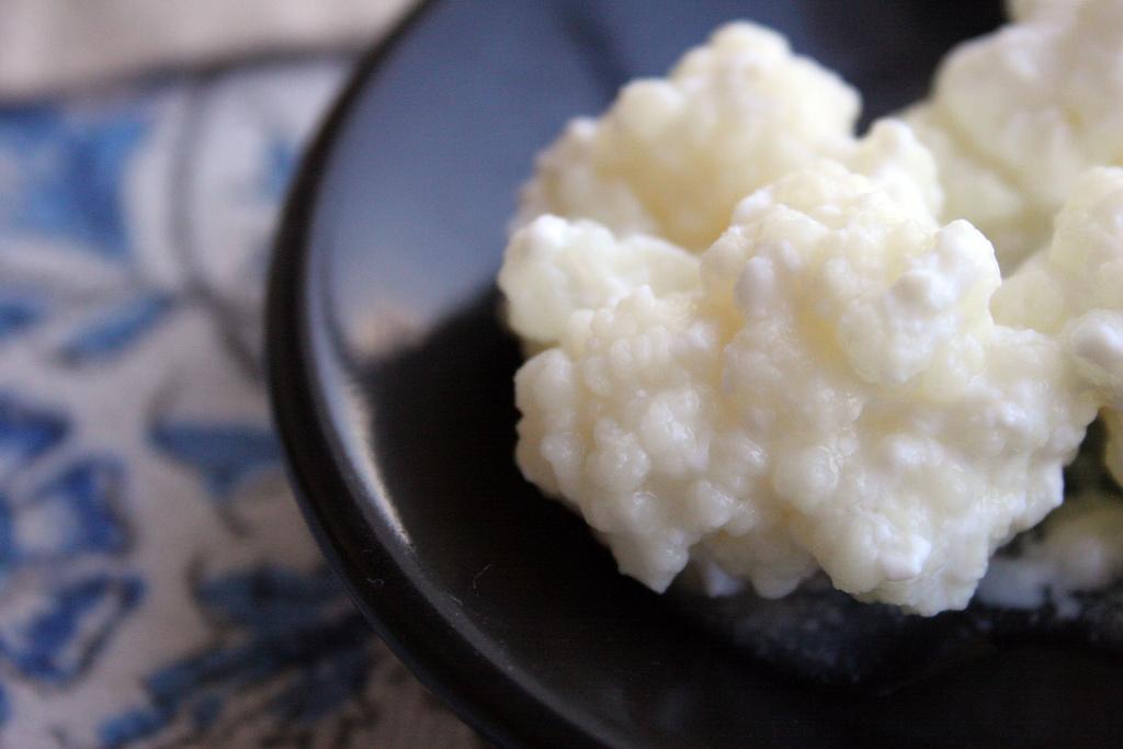 超簡單! 教你兩種方法在家自製優格!方法二:用克菲爾菌自製優格!