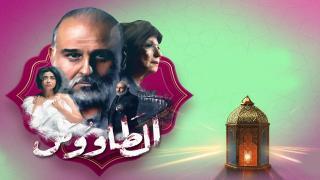 مسلسل الطاووس الحلقة 6 كاملة | العاشق التركي