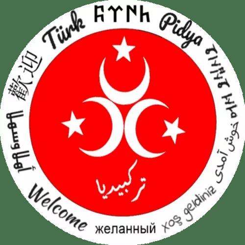 Turkpidya Logo