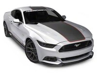 MMD by FOOSE Mustang Center Line Graphic Kit - Silver and ...