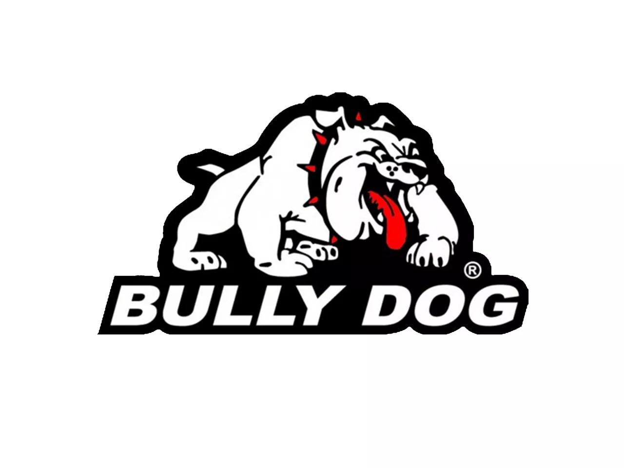 Bully Dog Jeep Wrangler GT Platinum Tuner 40417 (07-11