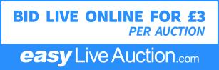 easyLiveAuctionBidLive(PNG X-Lrg)
