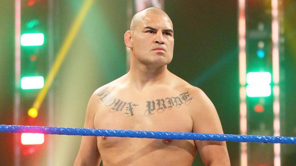 Brock Lesnar Cain Velasquez WWE