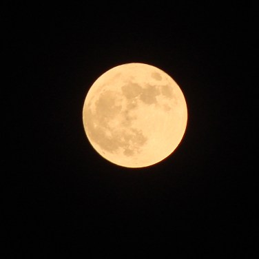 the_full_moon_two