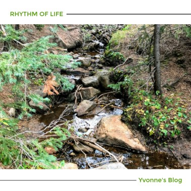 Rhythm of life; brook; stream; peace; refresh your soul; burdened