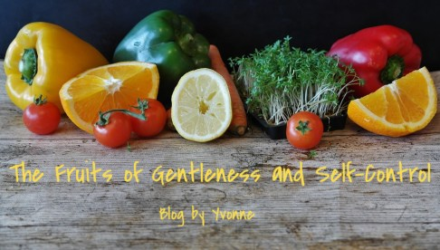 Fruits of the Spirit; Gentleness; Self-Control; Galatians 5:22-23; Blog by Yvonne;