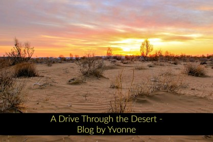 A drive through the desert Blog by Yvonne