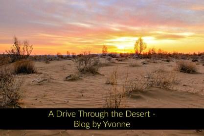 A drive through the desert Blog by Yvonne