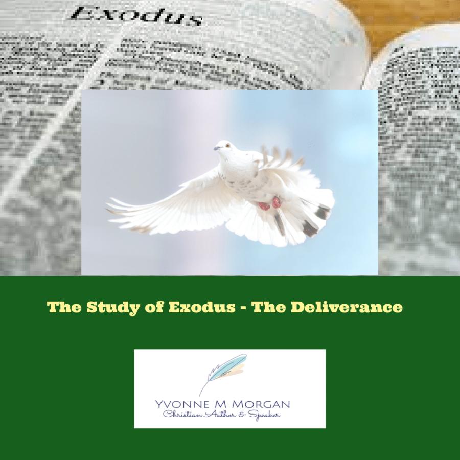 The Study of Exodus