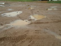 Week 7; July 19 2012 Turnip Rock Farm - Community