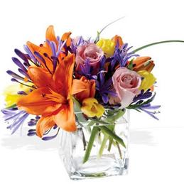 Floral Displays and Arrangements