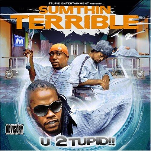 WTF Bad Album Covers Sumthin Terrible U Stupid TURNTABLING