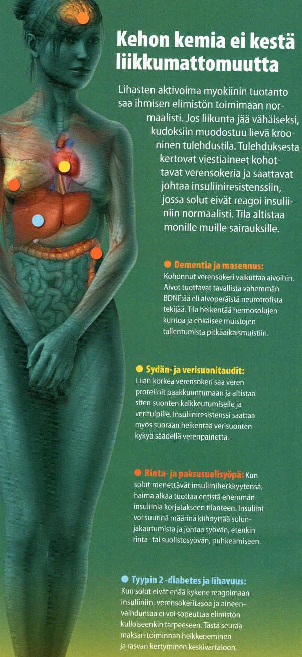 insuliiniresistenssi_70