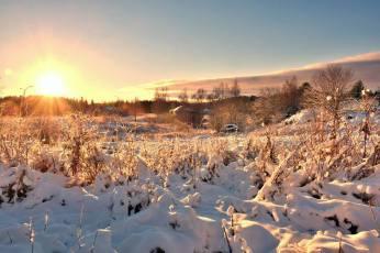 Talvinen Tursiannotko. Kuva: Ulla Moilanen