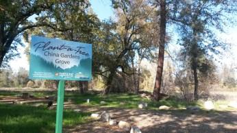 china-gardens-grove-signage