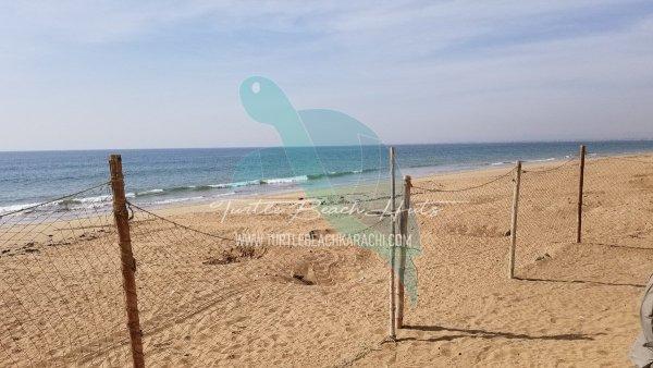 RENT BEACH HUT TURTLE BEACH KARACHI – TB6