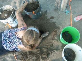 digging up 80 cm of sand