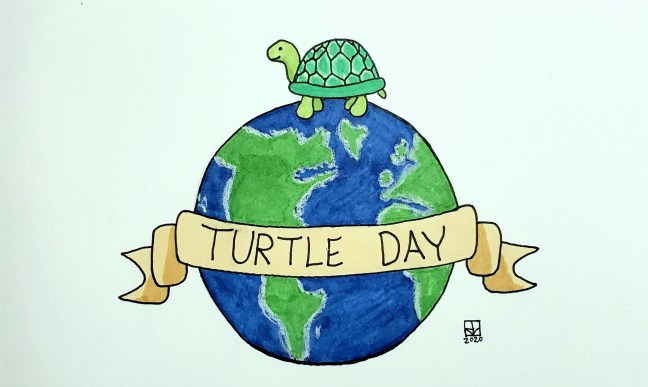20200523WorldTurtleDay