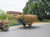 One way or another, we're gonna move that hay.