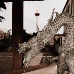 View from Higashi Honganji