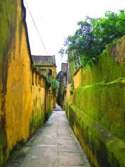 Moss Covered Alley, Hoi An, Vietnam