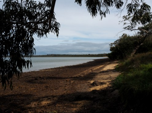 Woolleys Beach