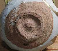帆柱窯 陶片