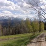 Przełęcz nad Łapszanką – Pogórze Spiskie