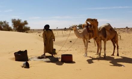 VIDEO-relacja z wyprawy do Mauretanii