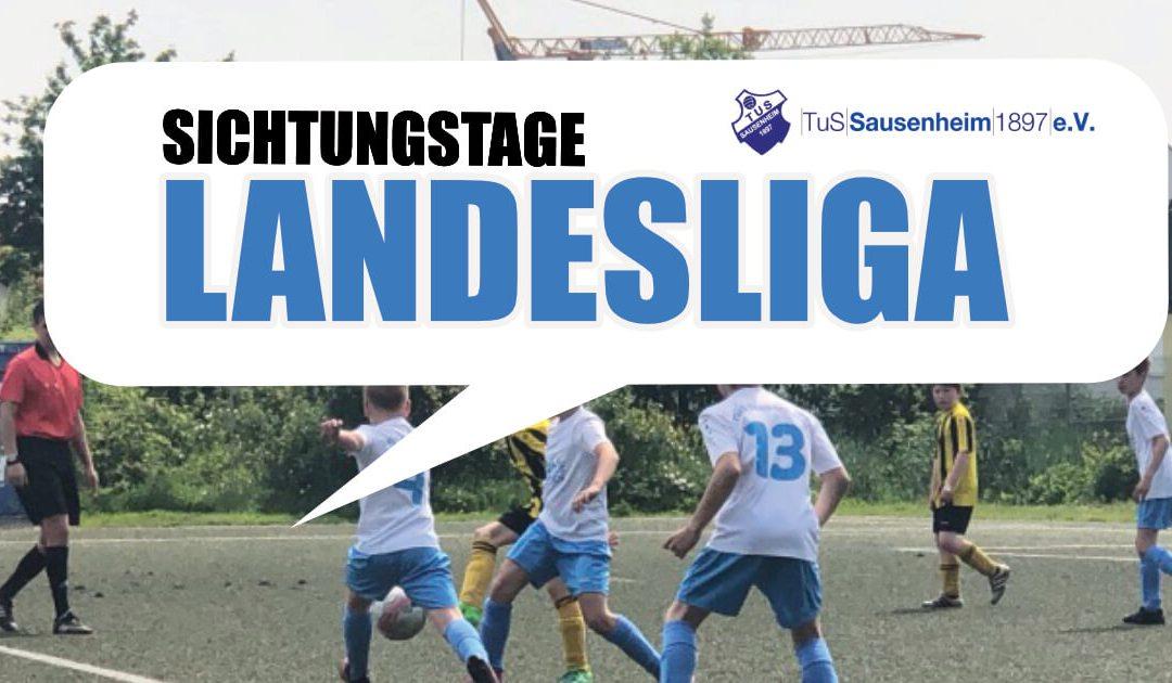 Heute 17:30 Uhr – Sichtungstraining für die Landesliga
