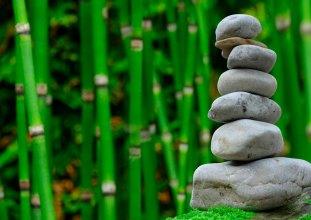 Artes marciales y meditación: ¿una receta para el éxito en el bienestar físico y mental?