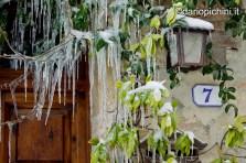 White Tuscany 11
