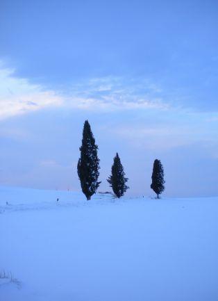 White Tuscany 5
