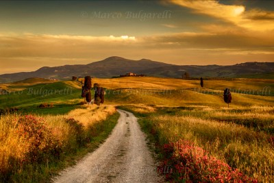 Tuscany photo tour landscape-04