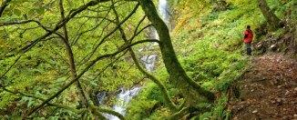 Cascada del Xiblu. Foto Alejandro Badía. Cedida por Turismo de Asturias.