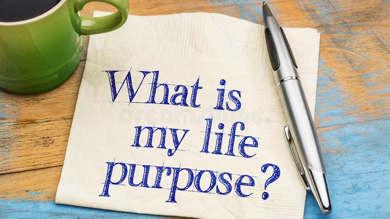 What Is The Purpose Of My Life? [Entry 16]
