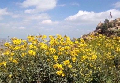 Get Some Fresh Air: A Hike Up Mt. Rubidoux