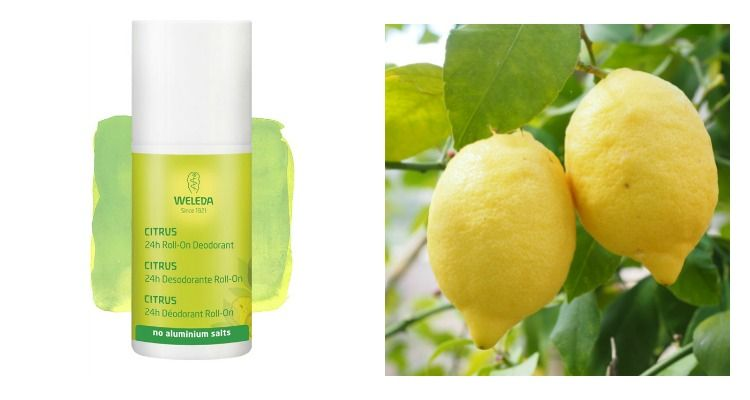 weleda citrus deo roll on