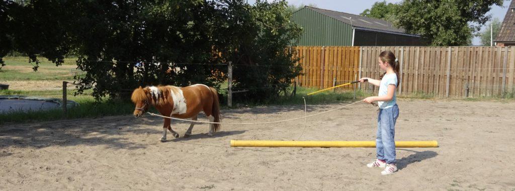 Grondwerk voor jeugd tussen Hemel en Paarden helpt je steviger in je schoenen te staan.