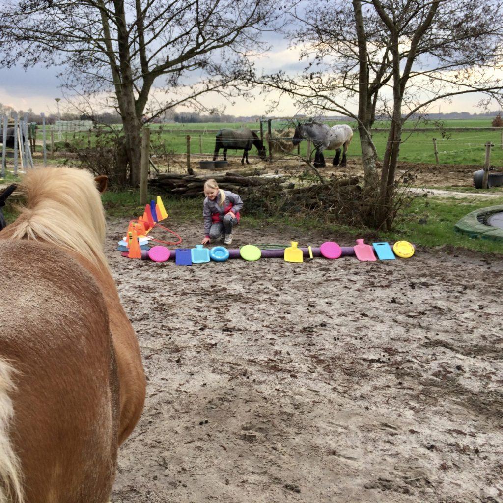 je eigen ruimte zichtbaar maken bij de Pony Paddock cursus