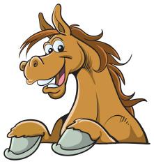 Sociale vaardigheden leren nabij paarden voor jeugd en jongeren