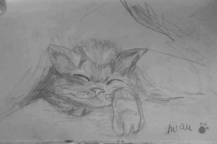 """""""No me gustan los gatos. Pero al ver al pequeño gato de mi prima tumbado entre las sábanas del sofá no me pude resistir a plasmarlo sobre el papel"""" (Lumi Show)."""