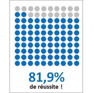 waffle chart excel pourcentage