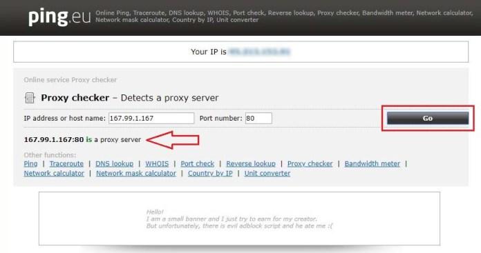 Proxy Checker Online