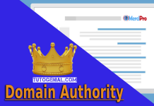 Booster son Domain Authority