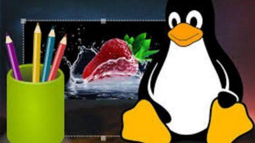 Aplikasi Edit Foto Terbaik di Linux dan Cara Menginstalnya