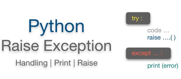 Python raise exception with custom message | Manually raising