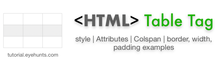 HTML table tag example