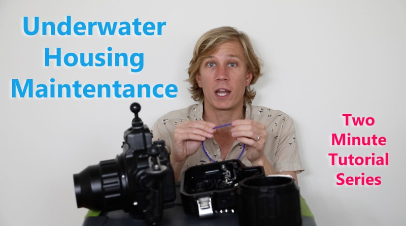 Underwater-Housing-Maintenance-Tutorial